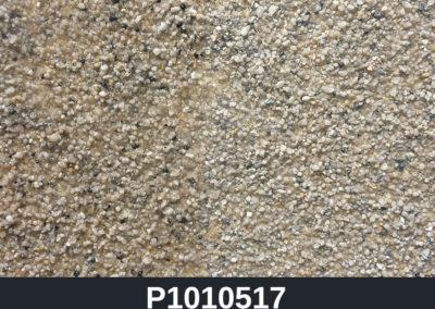 P1010517