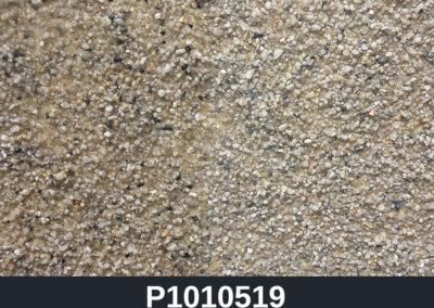P1010519