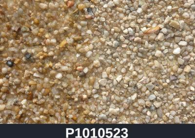 P1010523