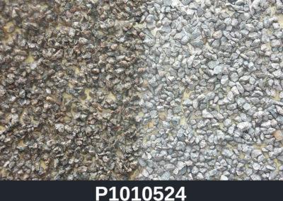 P1010524