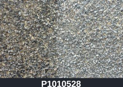 P1010528