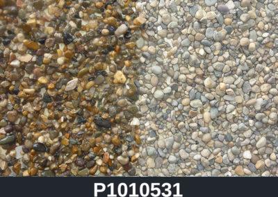 P1010531